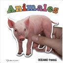QUITA Y PON. ANIMALES